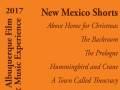 New Mexico Shorts