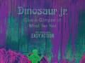 Dinosaur Jr. * Easy Action