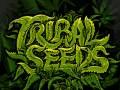 Tribal Seeds * Reviva * Innastate * Pocket Full Of Dub Soundsystem