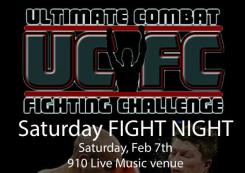 Ultimate Combat Fighting Challenge