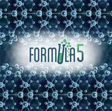 Formula 5