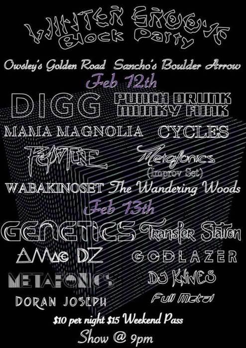 Winter Groove Block Party feat Metafonics / Cycles / Genetics / Godlazer