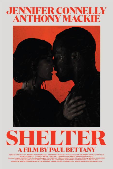 SHELTER (NEW YORK FILM CRITICS SERIES)