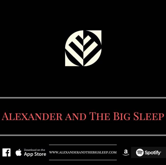 ALEXANDER AND THE BIG SLEEP, AND THE BLACK FEATHERS, AND DECATURE