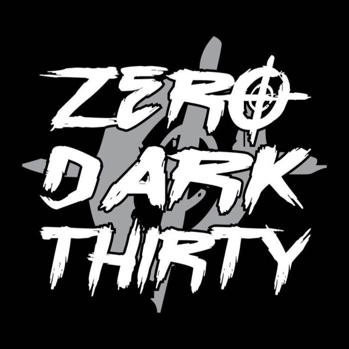 Zero Dark Thirty / Ashes Arose / Casualty Of Me