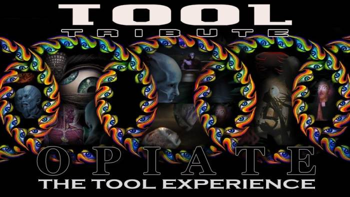 The Tool Experience: A Tribute