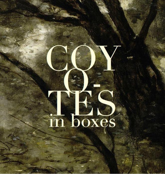 Coyotes In Boxes / Goodwolf / J Marinelli
