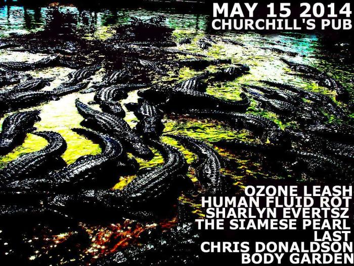 OZONE LEASH, HUMAN FLUID ROT, SHARLYN EVERTSZ, THE SIAMESE PEARL, LAST, CHRIS DONALDSON, BODY GARDEN, & DEATH TALISMAN VII