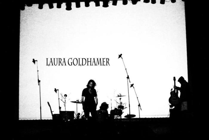 Laura Goldhamer & Friends