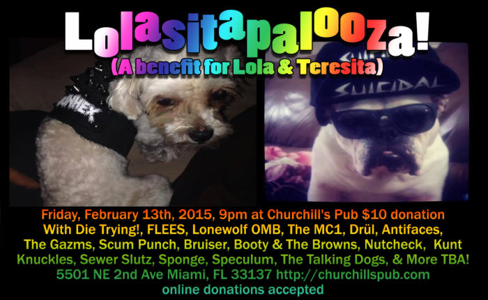 Lolasitapalooza (Benefit for Lola & Teresita) With Die Trying!, FLEES, Lonewolf OMB, The MC1, Drül, Antifaces, The Gazms, Scum Punch, Bruiser, Booty & The Browns, Nutcheck,  Kunt Knuckles, Sewer Slutz, Sponge, Speculum, The Talking Dogs, & More TBA!