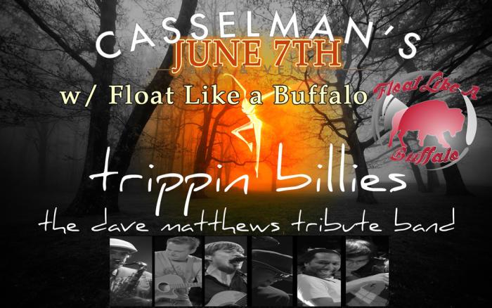 Tripping Billies - Dave Matthews Tribute