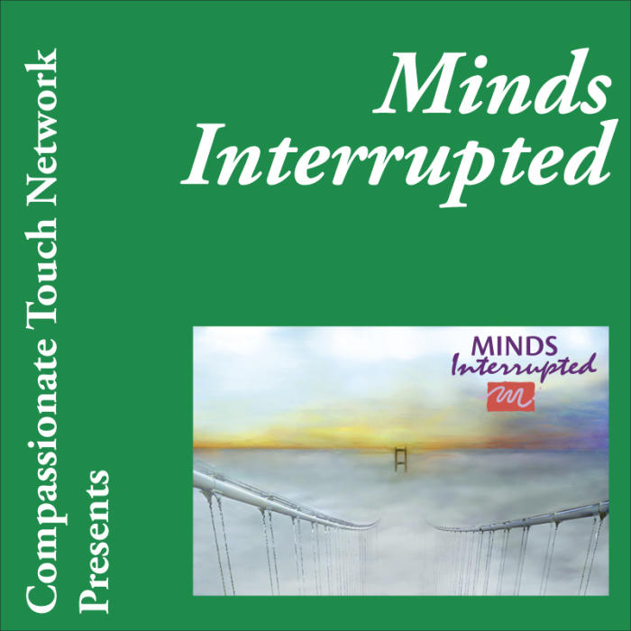 MINDS INTERRUPTED